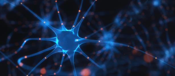 brainwaves-1376x600